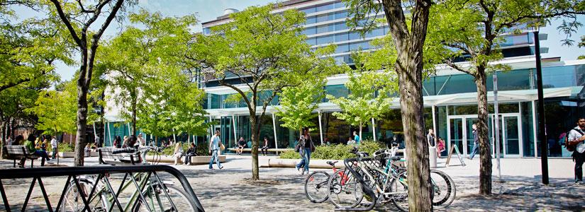 Campus walk