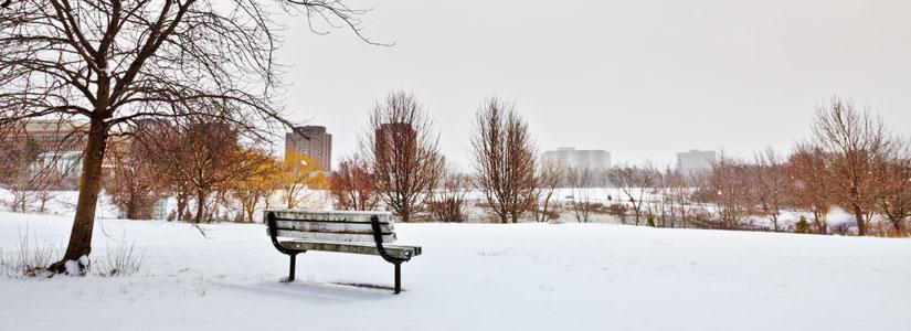 pond-winter