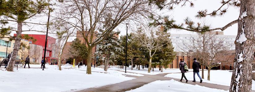 walkway-winter