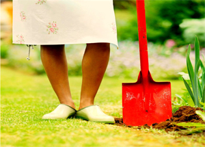 photo of a woman's feet beside a shovel in the ground