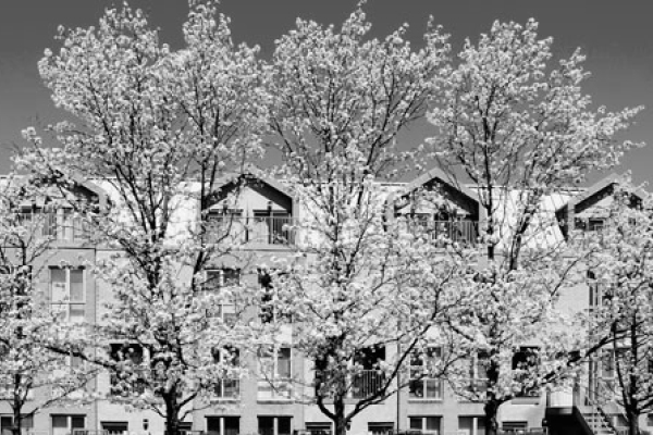 passy crescent residence in spring