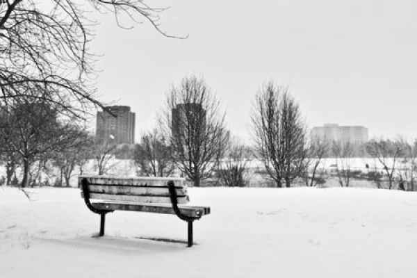 photo of pond residence in winter