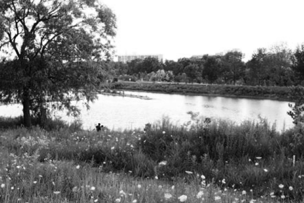 photo of stong pond