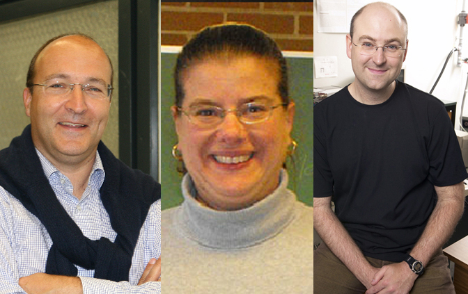 composite photo of Professors Georg Zoidl, Vivian Saridakis, and Logan Donaldson