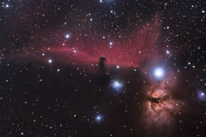 The Horsehead Nebula. Photo by recent York Science student Richard Bloch